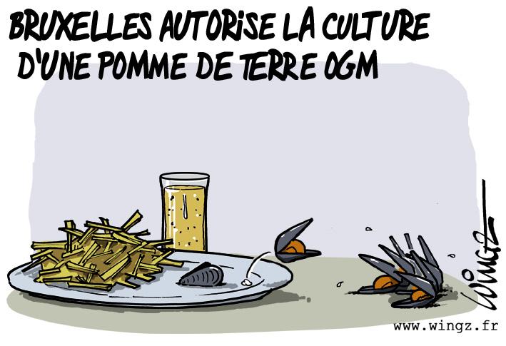 Horreur............ patate-OGM